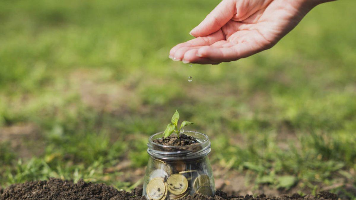 Você Já Ouviu Falar Sobre Licitação Sustentável?