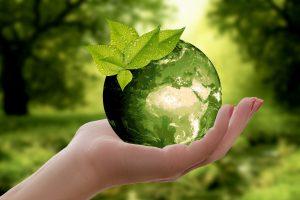 uma mão segurando um globo verde